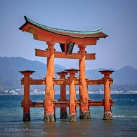 T is for Torii Gate