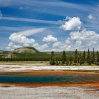 Y is for Yellowstone National Park