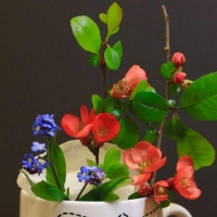 Richard-22670-Flowers-in-a-mug