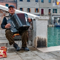 Accordian-in-Venice.-Dave-Venables