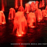 1-Red-Water-in-a-Foutain-By-Shannon-Branson