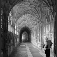Contemplating the Cloister